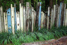 School / School fence