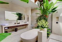 Home ideas / Tropical