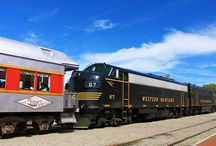 Durbin & Greenbrier Valley Railroad in Elkins / MOUNTAIN RAIL ADVENTURES in the heart of West Virginia's remote wilderness areas. Departs two historic depots April-December.