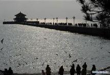 Qingdao / Qingdao, China
