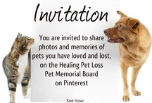 Pet Memorial Board / You are invited to pin photos of pets you have loved and lost, on this Pet Memorial Board. For details and guidelines, please see: http://healingpetloss.com/pinterest-pet-memorial-board/