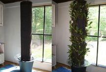 Green Walls - Pillars