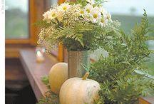 Fall Decorating / by Elizabeth Vanderpool