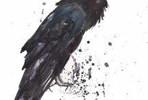 Eagle - Art