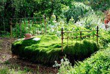 Magical garden elements