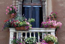FLORI balcon, apartam