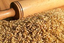 Saf Tahıl Taneleri / Bu Panoda geleneksel üretim metodları ile üretilmiş buğday, arpa, çavdar, yulaf, mısır ve karabuğday tanelerini bulacaksınız.