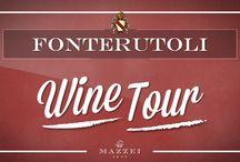 Fonterutoli Wine Tour
