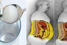 Receita  dietas