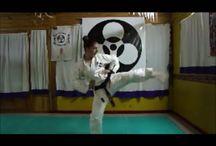 Karate / SHINSHINKAN RYU
