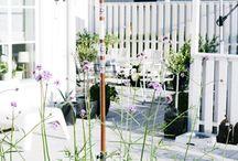 Trädgård och staket