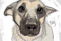 Animale desen