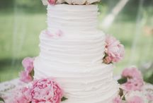 Sara's Wedding / by Ashlee Dilloway