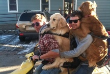 Wish I had two dogs and a motorcycle / Four friends on a motorcycle at once