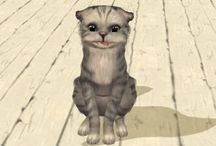 CAS - Pets