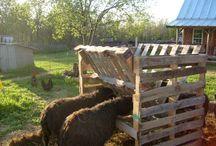 Dyr inventar gård