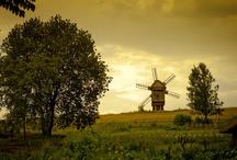 windmill / by Ellery Flynn