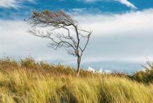 Landscape / Landschaftsfotografie #j-wittenbrock