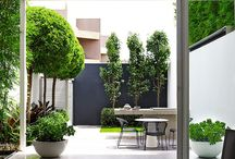 Small garden spaces