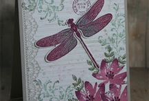 Stampin Up Dragonfly DReams