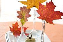 fall stuff / by Jody Wentzel