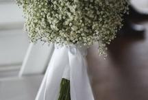 WeddingWeddingMarried / by Cassie Cares