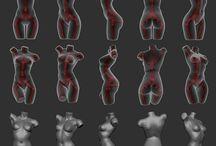 Body Modeling