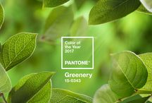2017 Pantone Colour of the Year - Greenery