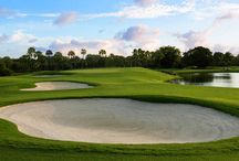 Golf / From Miami to Ireland, experience world famous courses with Trump Hotels.