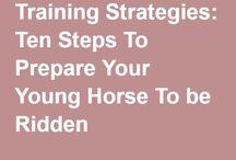 Restarting a Horse