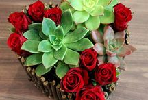 Valentines og Morsdag