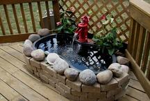 bassin extérieur jardin