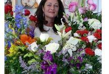 Deborah Dolen Author / by Deborah Dolen