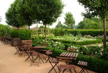 Our Headquarters / Collection of the most beautiful pics taken from our headquarter's garden in Scorzè.