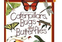Bugs, bees, ladybugs, butterflies etc for Preschool