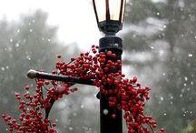 christmas / by Nicki Woo - The Home Guru / Nicole T. Woodard