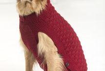 Bruno abrigo