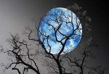 Beautiful Moons / A collection of beautiful sunsets, sunrises and moonscapes.