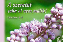 idézetek, bölcsességek