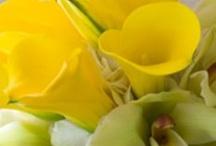 Yelloww weddin Deco