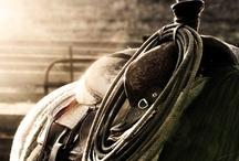 detalles caballos