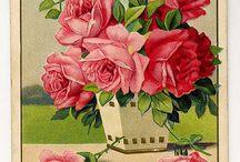 Κάρτες με λουλουδια