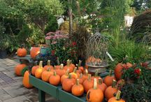 Fall is in the air! / Preparing for Fall around our garden center!