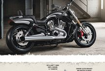 vrod muscle