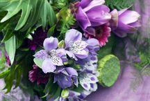 Floral Trends / 0