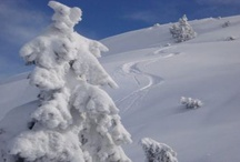 Winter season / Snow Photos and Pictures for Snow Lovers