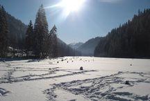 Harghita County, Romania