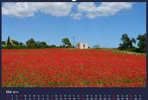 Kalender / Kunst in Malerei und Fotografie