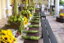 Flowers and Tablescapes / by Emily Conte