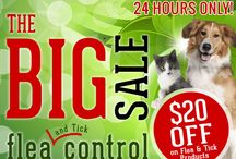Biggest Flea Sale 2014 / Save now at the Biggest Flea Sale of the Year!  Today only, Save $20 Off select flea & tick control!